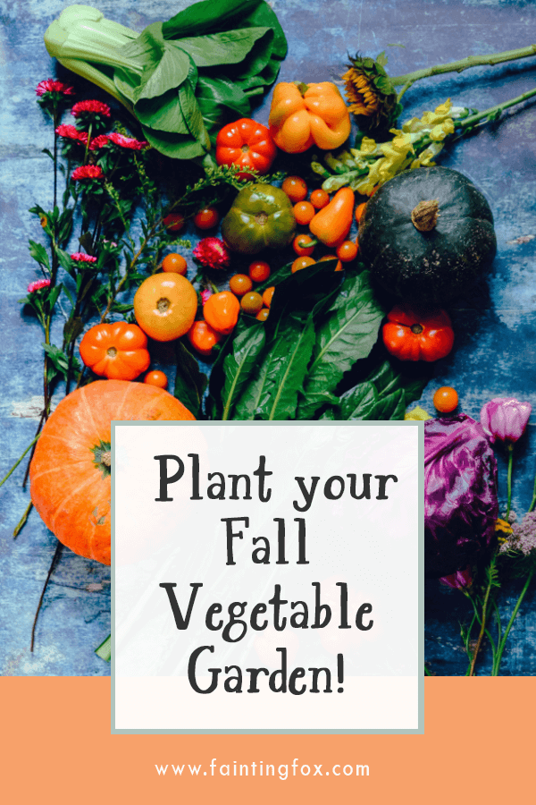 What Can You Plant in a Fall Vegetable Garden? | Fainting Fox Farm
