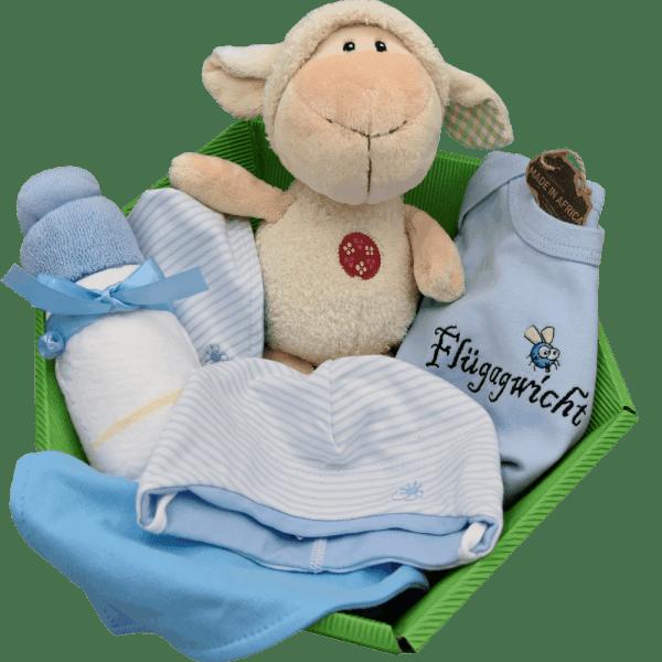 Baby Geschenkkorb blau
