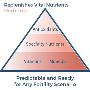 fertility supplement with no herbs