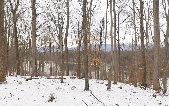 Available Land in Charlottesville Virginia, Views from Lot 5