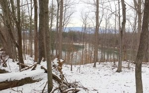Available Land in Charlottesville Virginia, Views from Lot 6