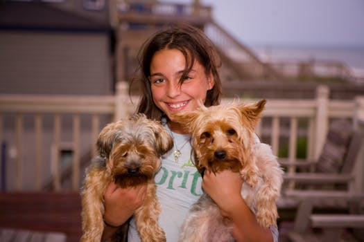 woman holding dogs