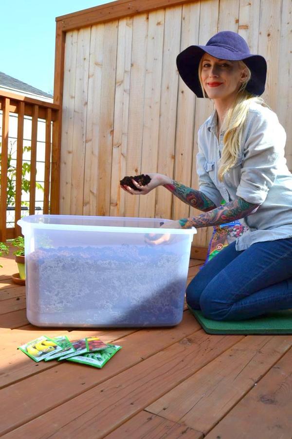 Tattooed Martha - Container Gardening (5)