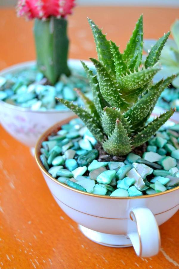 Tattooed Martha - Teacup Succulent Planters (12)