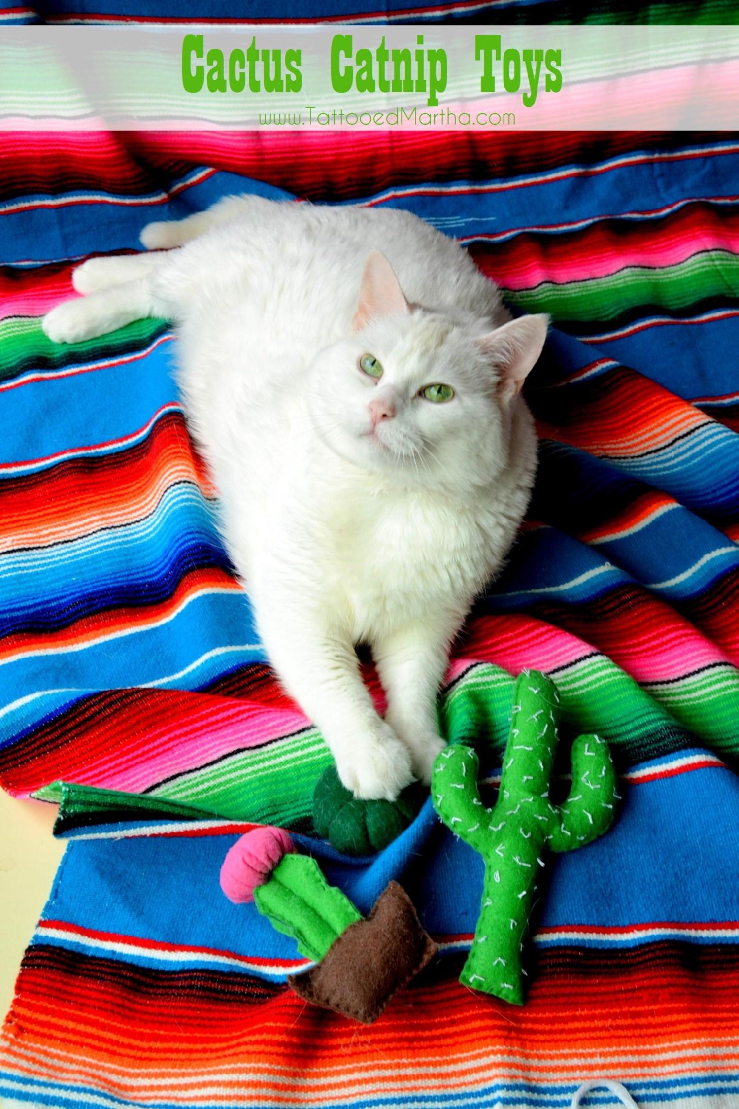 Cactus Catnip Toys