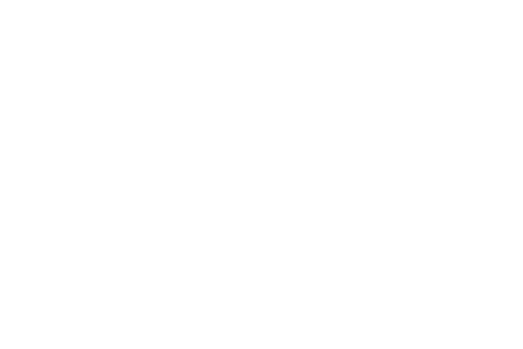 fair trade cycle