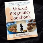 The Natural Pregnancy Cookbook