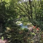 uc botanical garden