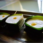 Thai Coconut Sago Pudding | @fairyburger