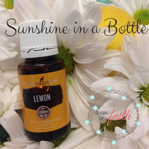 Sunshine in a Bottle (1)