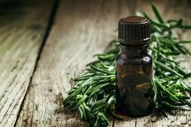 tea tree oil faiza beauty cream