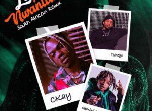 Download Mp3 Ckay Love Nwantiti Ft Gemini Major Tshego South African Remix Fakaza