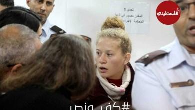 Photo of شبكة فلسطيني الاعلامية تطلق هاشتاغ #كف_ونص تضامنا مع عهد التميمي
