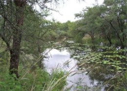 A picture from Quiet Waters