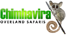 Click here to go to the Chimhavira website