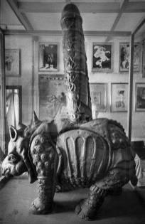 Rinoceronte Fallo - Rino Phallus