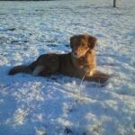 Chilling in the snow!