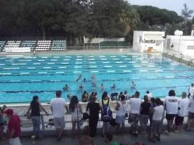 Swimming047