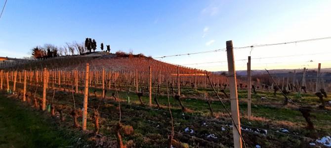Costigliole d'Asti: gita con bambini fra panchine giganti, vigne e storia