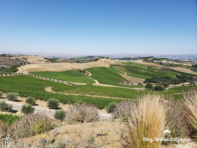 blog-familia-california-paso-robles-23-800x600