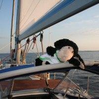 Ein Seefahrt, die ist lustig...