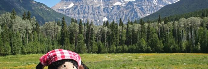 Der Mount Robson - natürlich ohne Wolken