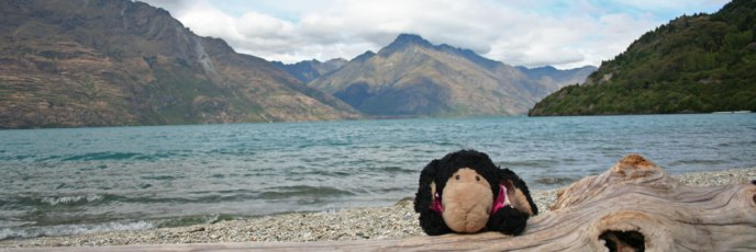 Mittagspause am See auf dem Sunshine Bay Track