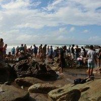 """Der """"Hot Water Beach"""" bei Ebbe - mit viiielen buddelnden Menschen!"""