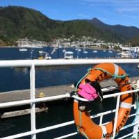 Picton im Hintergrund - Aber ich halte mich hier mal lieber direkt am Rettungsring fest