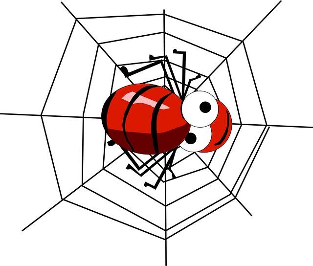 Spinne. Freundlich.