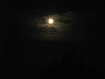 Mond. Voll.