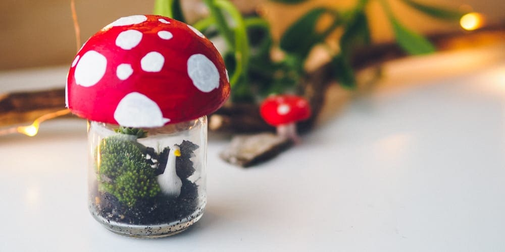 Indoor activities for kids under 6: Jar terrarium,