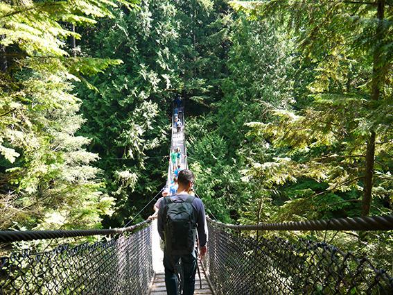 Lynn canyon, Vancouver