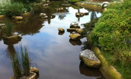 Sortie en famille : Le parc de la tête d'or à Lyon