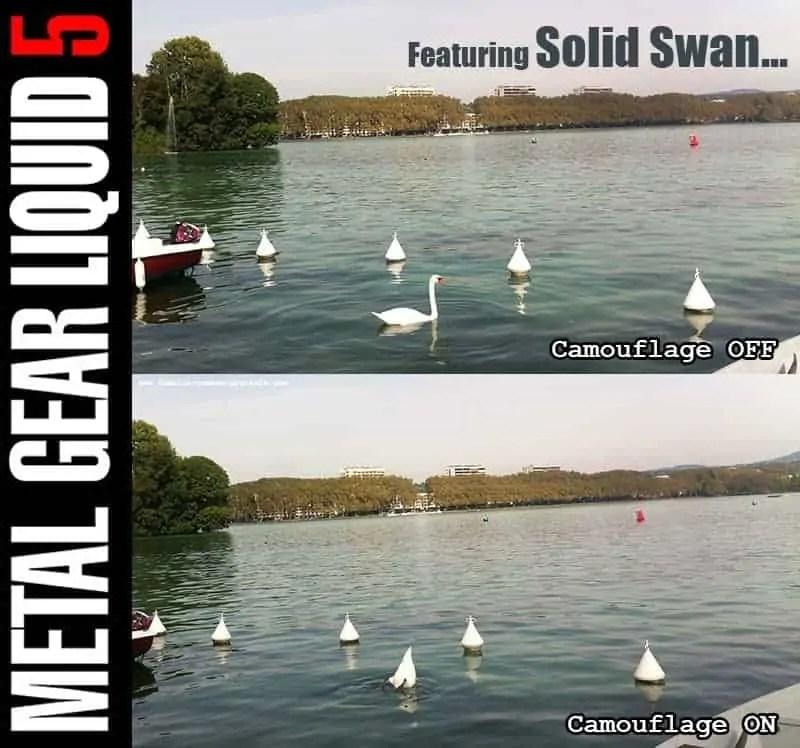 Solid Swan sur famille-nomade-digitale.com