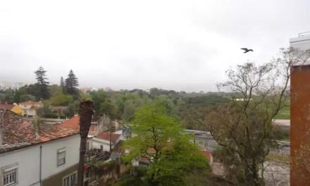 Arrivée au Portugal : il pleut sur Lisbonne.