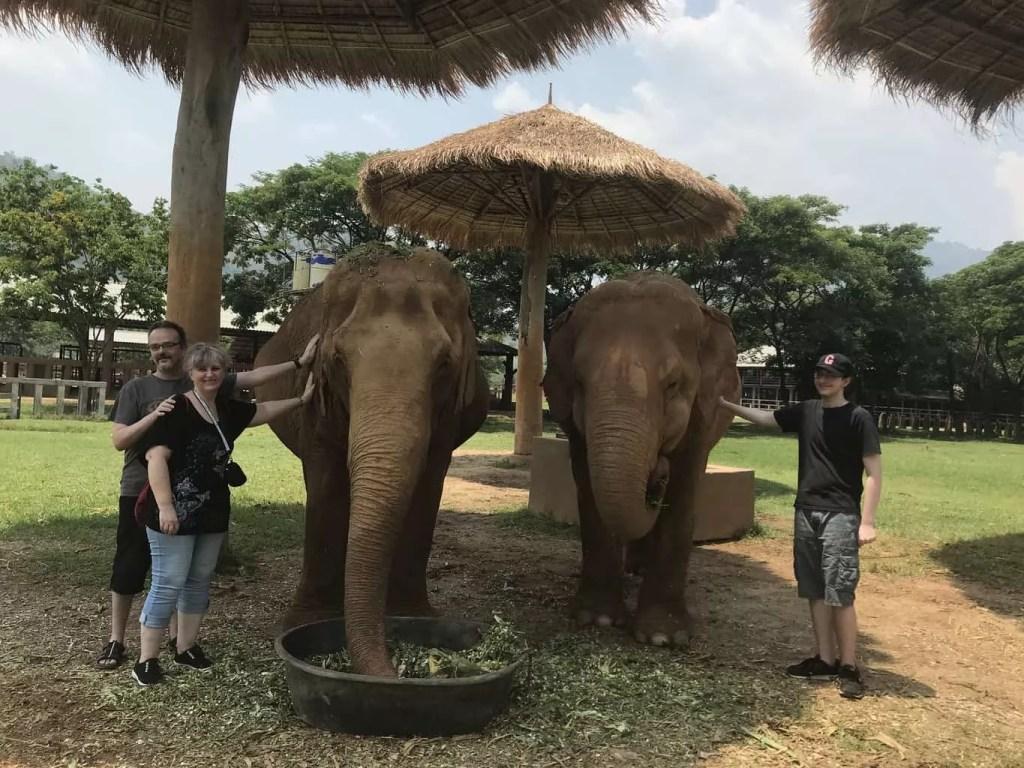 meilleur refuge pour elephants à Chiang Mai