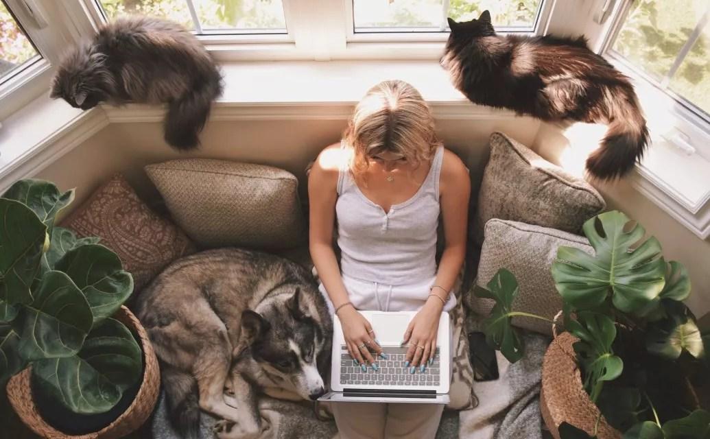 6 façons de monétiser et gagner de l'argent avec son blog