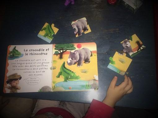 puzzle fleurus