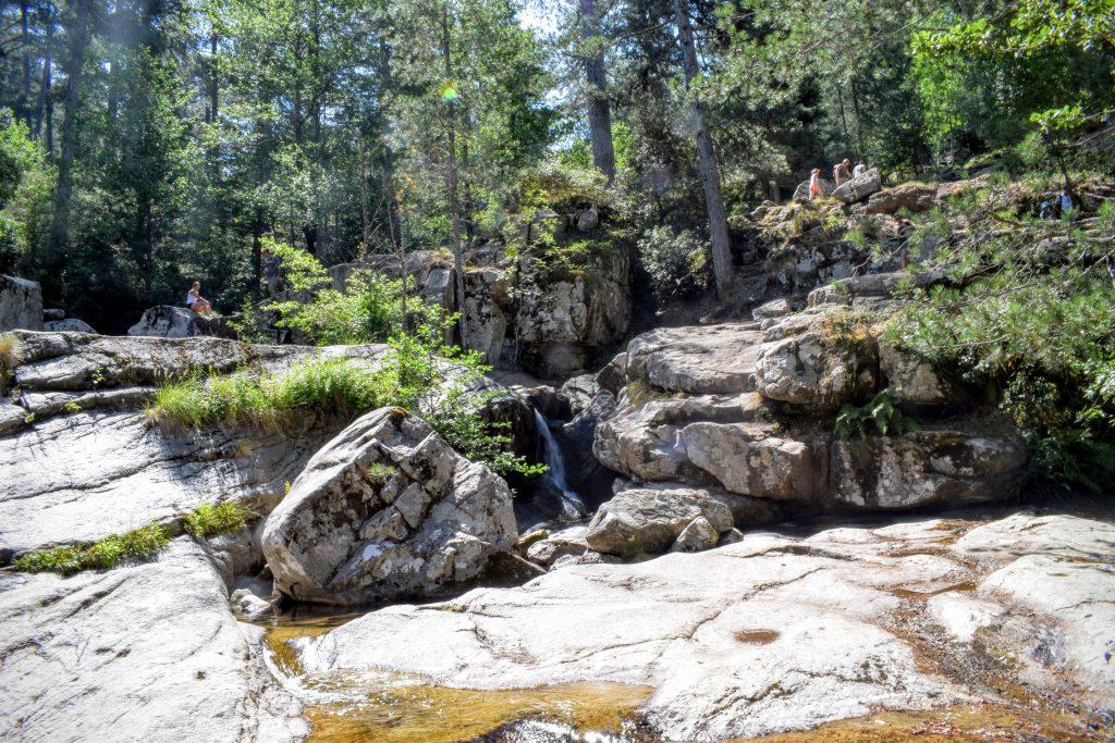 Forêt d'Aïtone