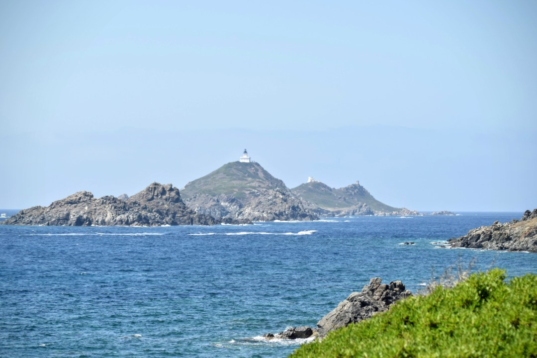 Carte Corse Ile Sanguinaire.Des Iles Sanguinaires D Ajaccio Aux Tortues D A Cupulatta