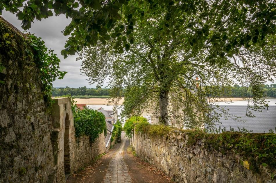 Sentier du Thoureil