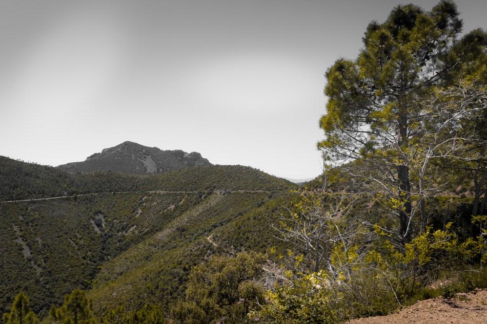 Route du massif de l'Esterel