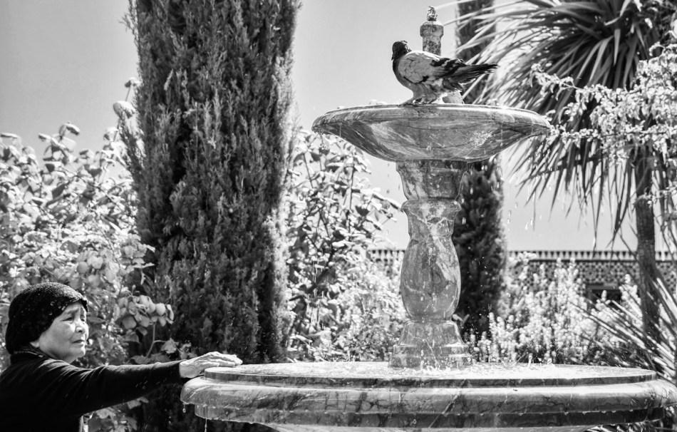 Fontaine de la Grande Mosquée de Paris