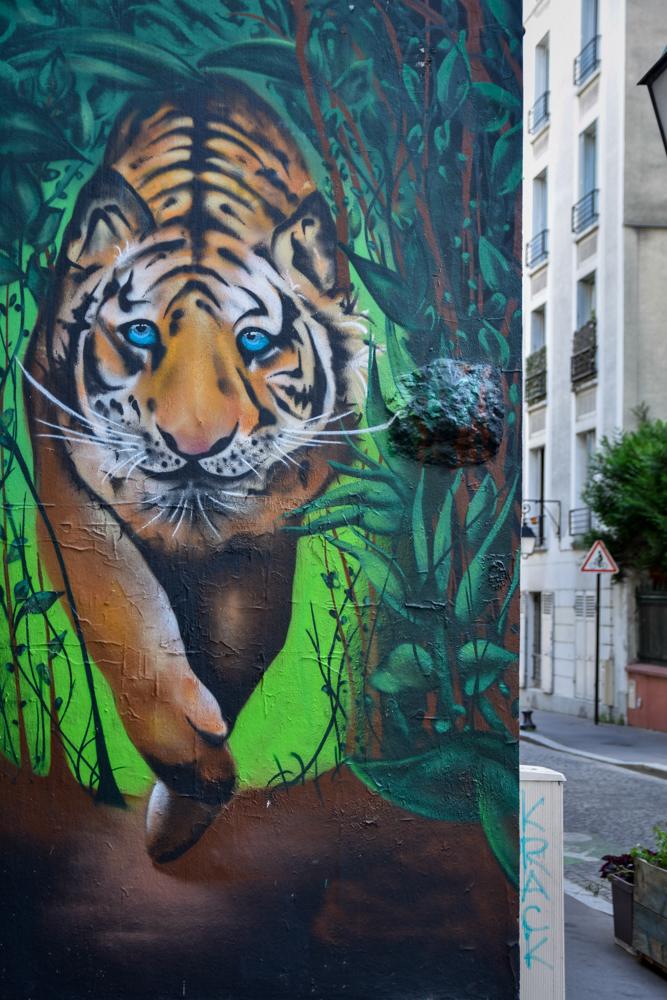 Tigre Street art