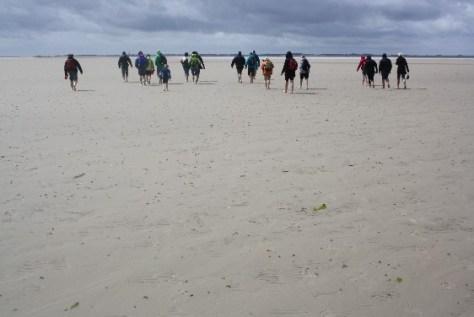 Eine Wattwanderung ist gerade mit Kindern unheimlich spannend und lehrreich und gehört an der Nordsee einfach dazu!
