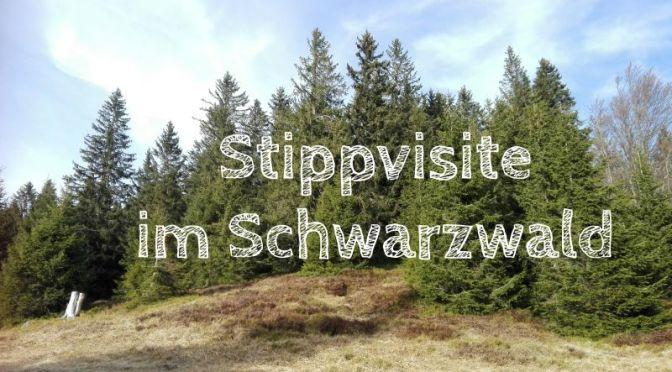 Familienurlaub im Schwarzwald: Stippvisite im Feldberger Hof