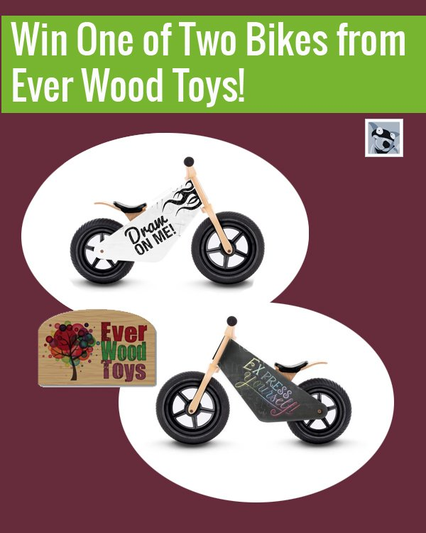 Ever-Wood-Toys-competition