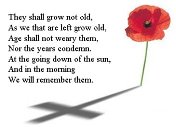 Poppy Day Image