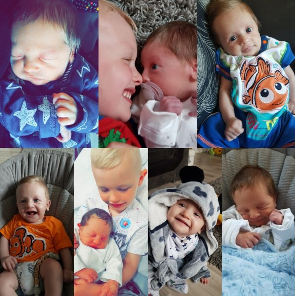 Jensen Cole is One Family Clan Birthday Baby Special Photographs